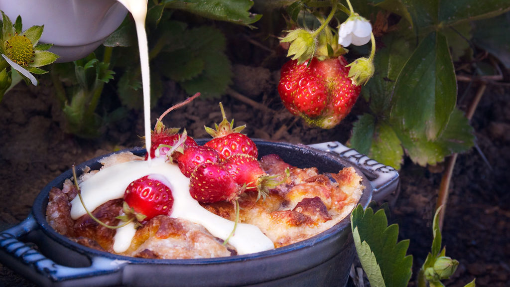 Brioche Bread Pudding – Garden Strawberries, Sweet Cream
