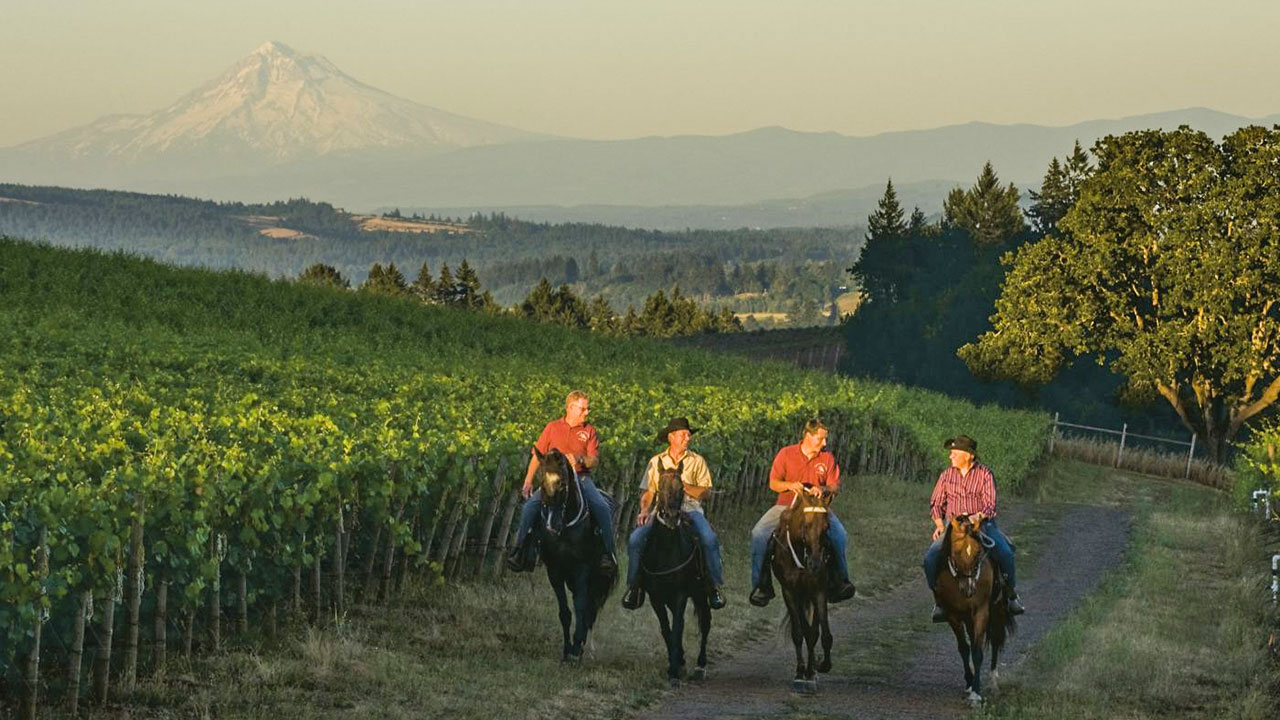 Horse Back Riding in Willamette Valley Oregon